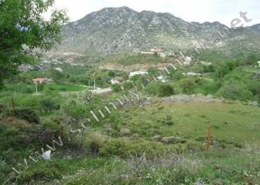 Selimiye Satılık Arsalar Muğla