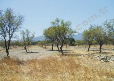 Land For Sale in Datca