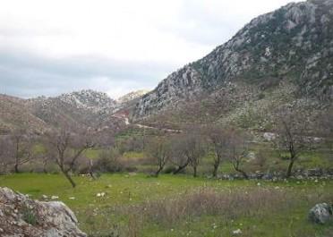 Sahibinden Selimiye Emlak Arsa